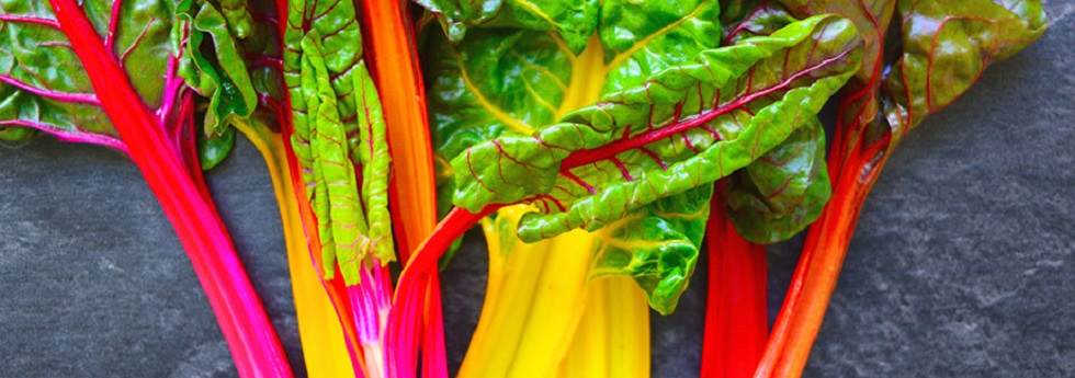 swiss-chard-category.jpg