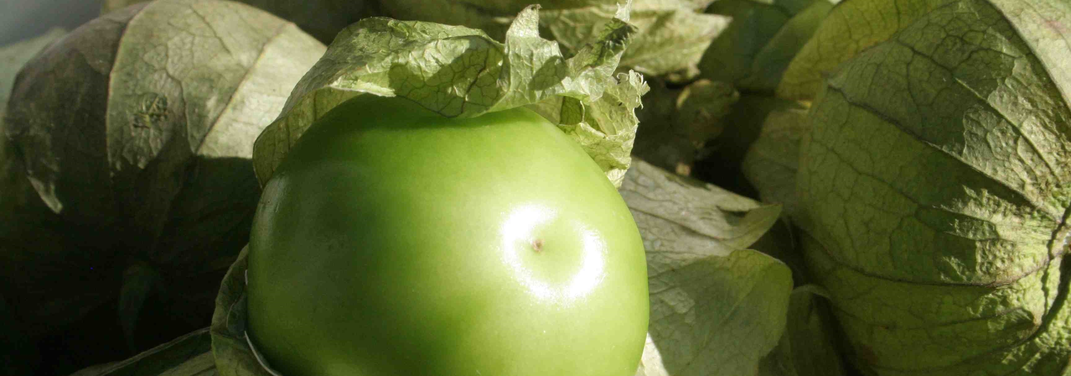 tomatillo-category.jpg